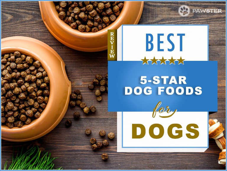 Top Recommended 5 Star Dog Food Brands 2019