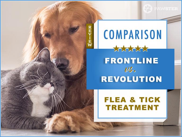 Frontline Vs Revolution 2020 Flea Tick Treatment For Dogs Cats Comparison