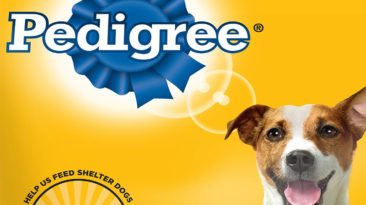 Is Pedigree Good For Dogs